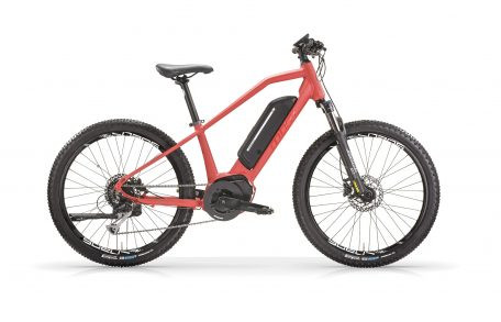 "Chaos eMTB 24"" Wheel 50nm 11.6amp"