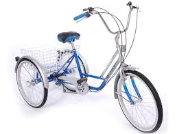 """Trilogy Tricycle 20"""" And 24"""" Wheel"""